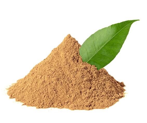 Amatea organic guayusa extract. © Applied Food Sciences. Inc.