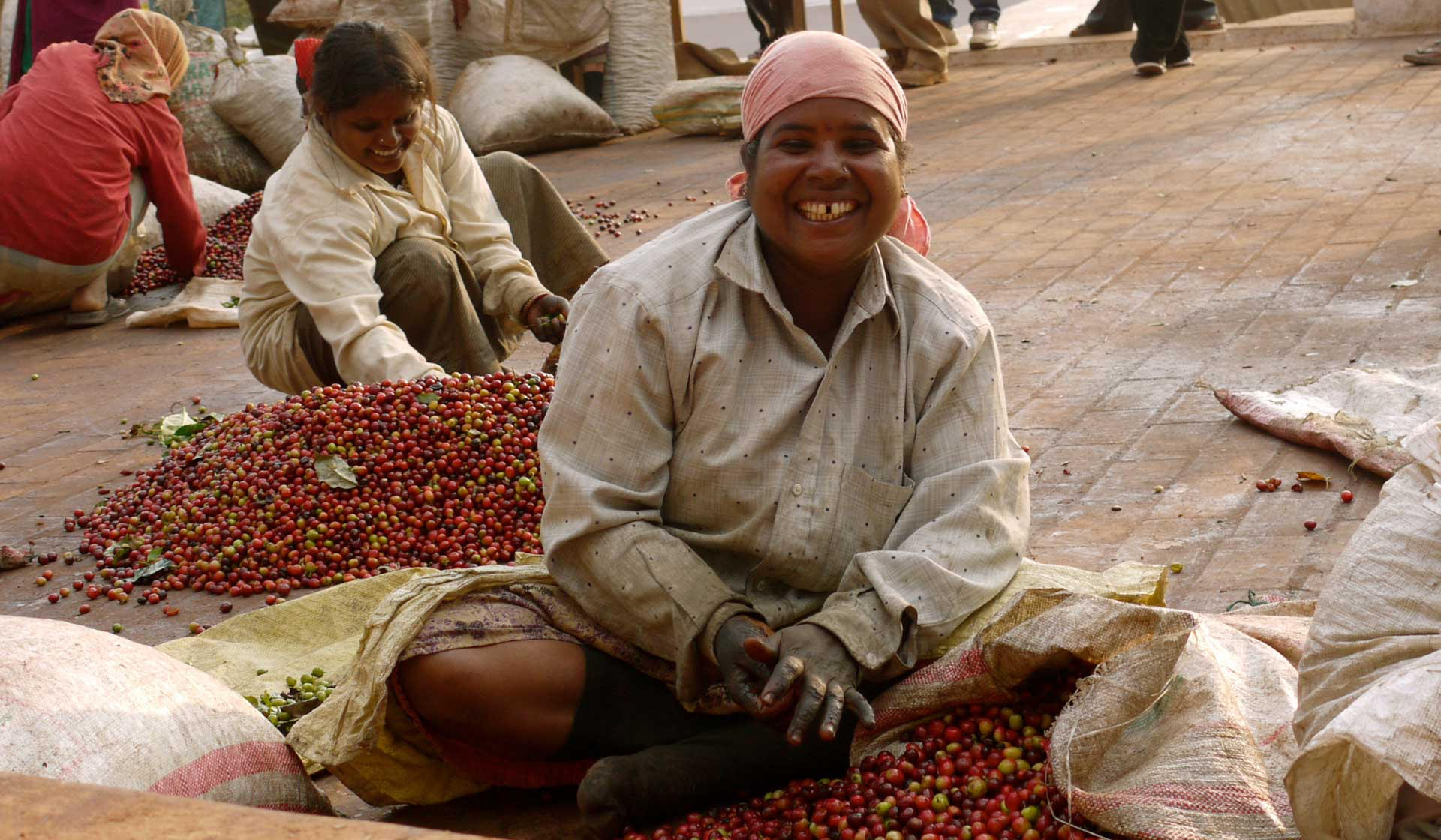 Separating coffee beans from the cherry. ©Applied Food Sciences, Inc.