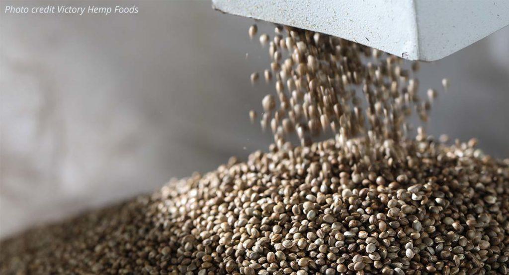 Bulk US hemp grains to make plant-based protein.